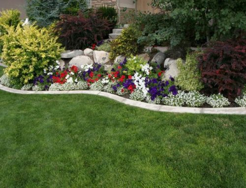 Add Beauty to Your Home with Professional Landscaping