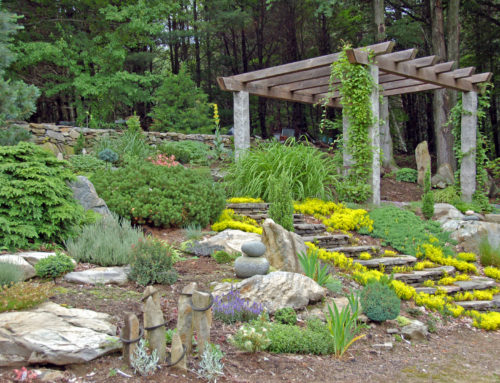 Essential Tips for Garden Decorative Stone